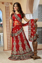 Designer Indian Pakistani Wedding Bridal Wear Velvet Lehenga