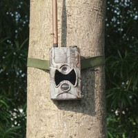 Good news!gsm remote management hunting trial camera