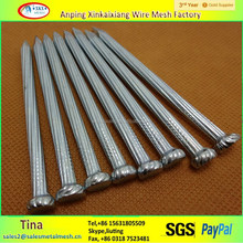 C45 Galvanized Grooved Angular Spiral Construction Concrete Nails /Steel nails