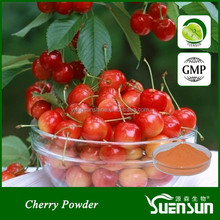 Hot Selling Black Cherry Powder Cherry Juice Powder