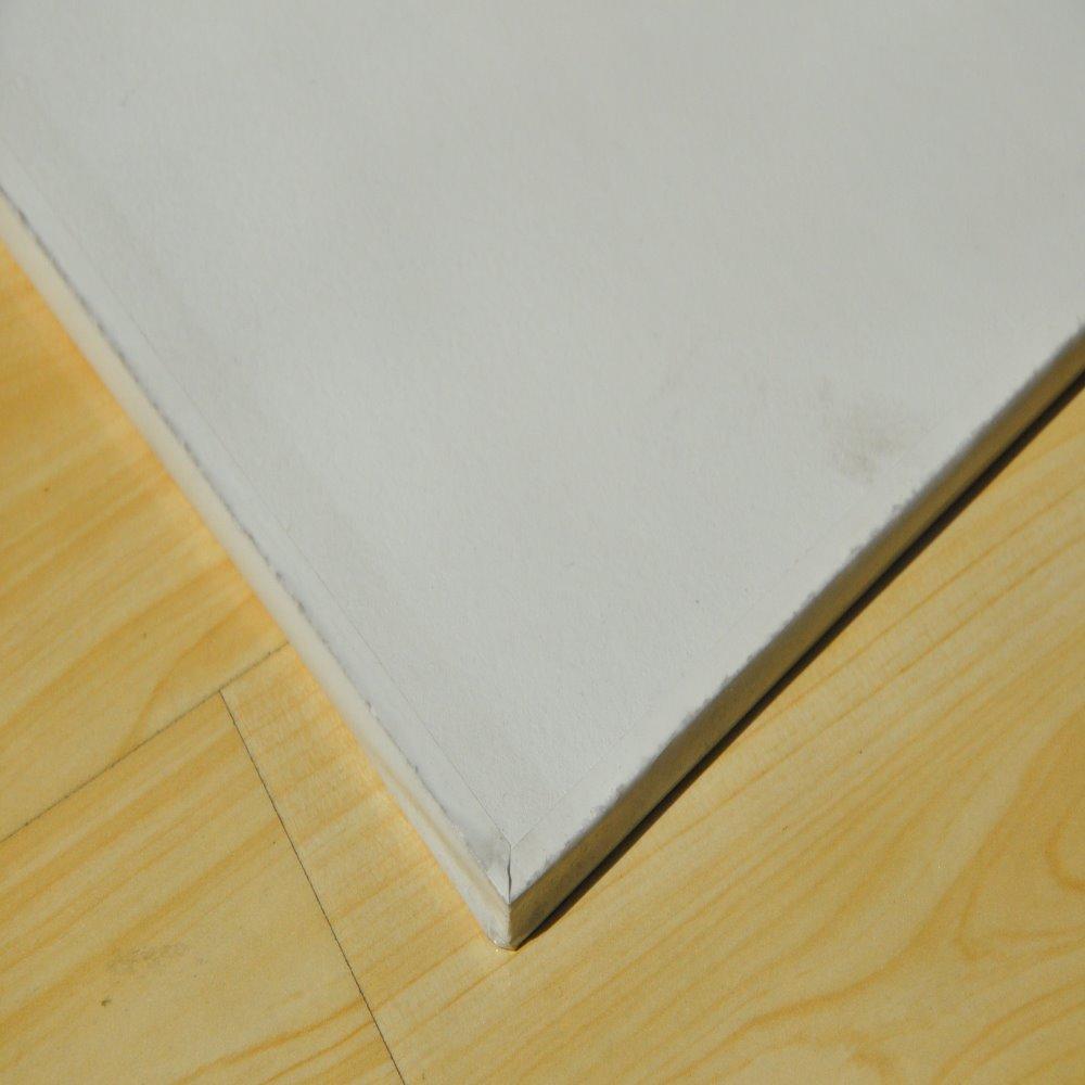 Ceiling tile 2x4