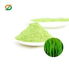 young wheat juice wild wheat grass wheat powder drink