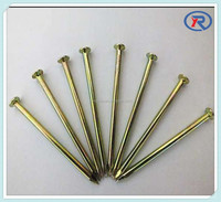 Hardened Steel colorful concrete nails from china