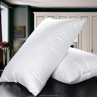 Top sell vacuum packed cotton duck down pillow