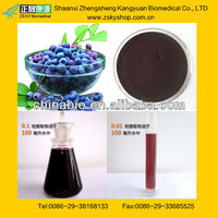 Bilberry Extract with Anthocyanosides 25% from GMP manufacturer