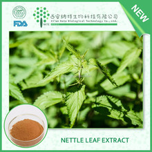Pure fine natural Nettle Leaf Extract 7%silicic acid with free sample from China supplier