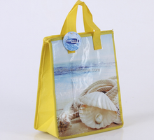 Insulated Type and Nylon Material Pizza Bag fast Food Delivery Bags