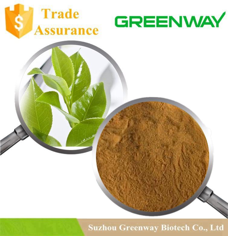 100% pure natural Green Tea P.E.,Green Tea Extract 98% polyphenol