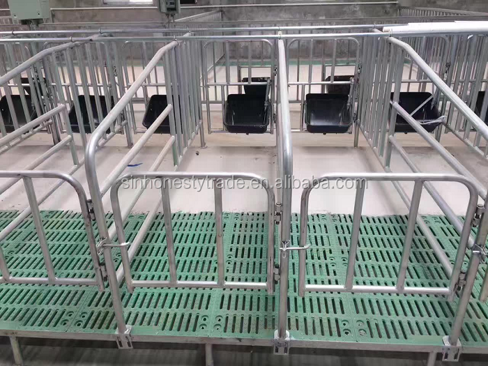 Gestation Crates Pig Farming Equipment