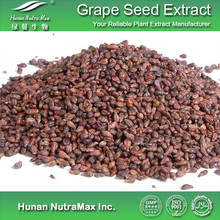 Plant Extract Cosmetic Grape Seed Extract/Grape Seed Extract Polyphenol
