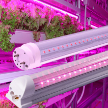 RGB Red Blue Full Spectrum T8 T5 plant Led Grow light tube