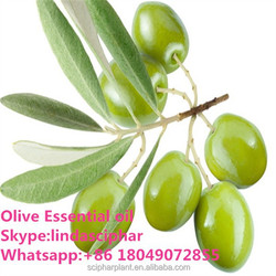 Olive Essential Oil for Massage in bulk wholesale