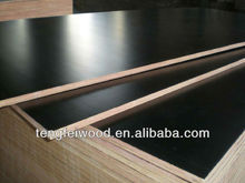 plywood manufacturers in shandong