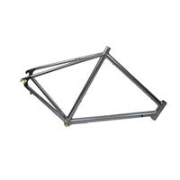 Custom Design Aluminum Bike Frame