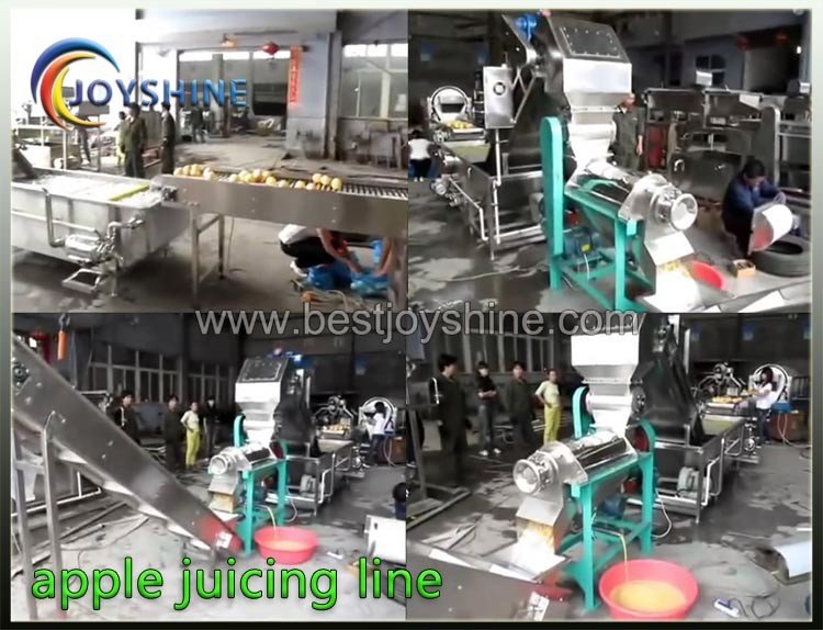 1500kg/h EU standard industrial orange juicer