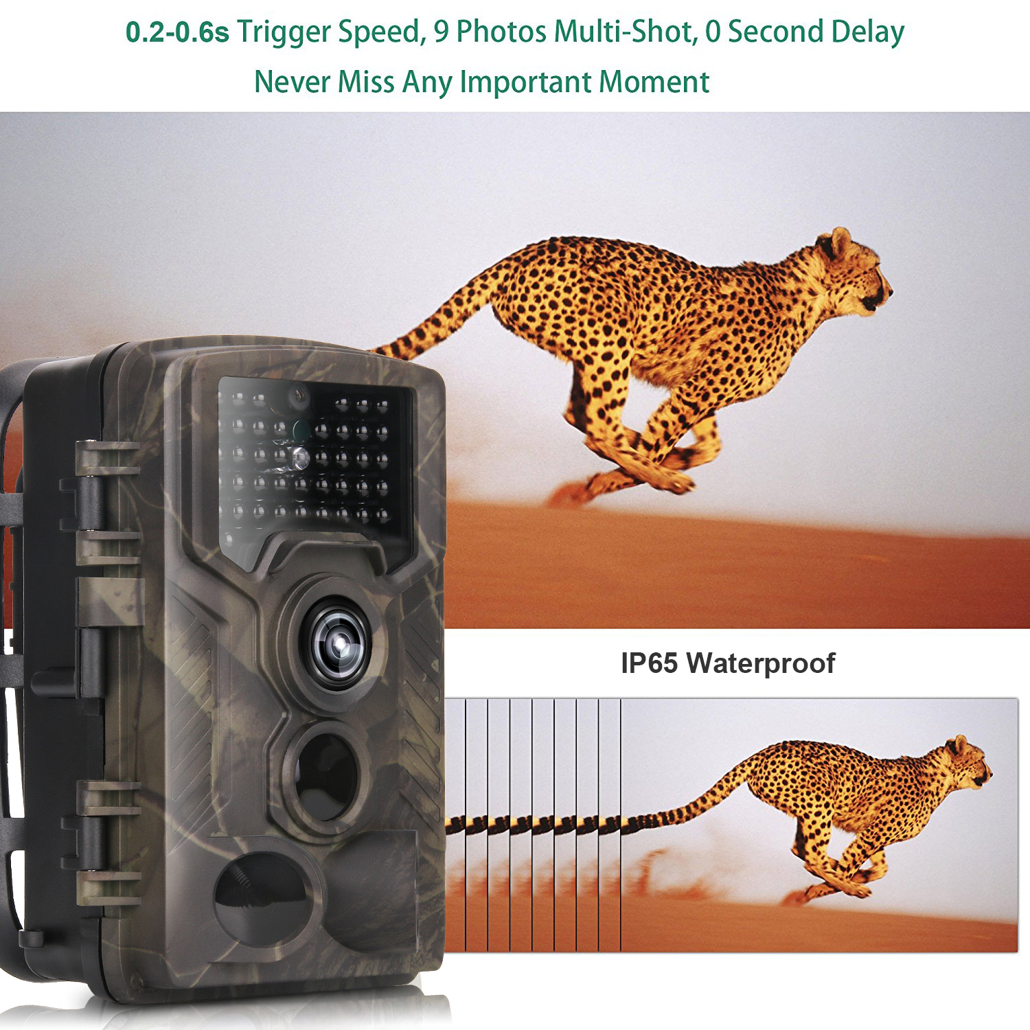Wireless Wildlife Camera.jpg