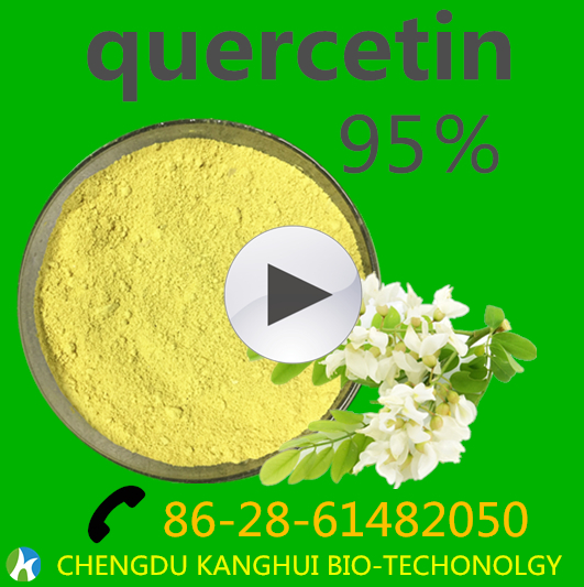 Antioxidant enzyme antiviral Active food supplement Natural Antioxidant 95% Quercetin Dihydrate , cas no.:6151-25-3