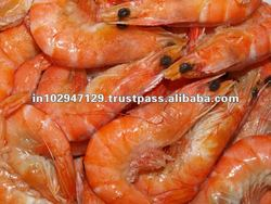 Shrimp feed additive/probiotics/natural feed supplement/ improve great growth of shrimps