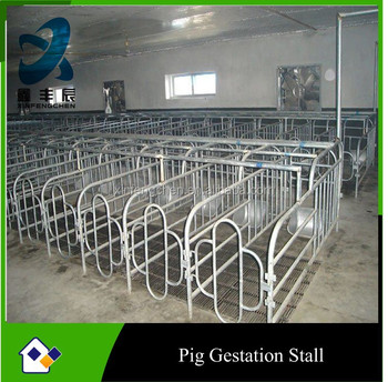 Pig gestation crate for sows