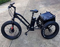 2018 Latest design electric tricycle 36V 250W/350W/500W go for picnic STM-TDM03Z