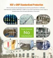 Gmo Free Pumpkin Seed Powder Extract Fatty Acid - Buy High Quality ...