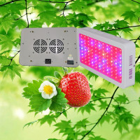 DIY UV IR Red Blue indoor hydroponic 300w led grow lamp with cooling beauty