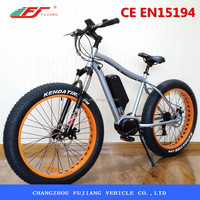 2015 Hot sell 500W fat electric bike, strong motor mountain electric bike ,en15194 electric bike