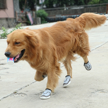 New type 2018 recommended breathable pet outdoor sports net shoes big dog shoes