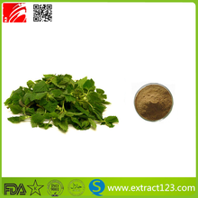 Stinging Nettle Leaves Extract Beta-sitosterol
