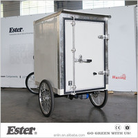 ESTER 2016 new style Electric Cargo Trike