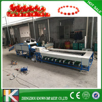 304 Stainless Steel Automatic Cherry Tomatoes Washing , Drying, Sorting Line / Cherry Tomatoes Grading Machine