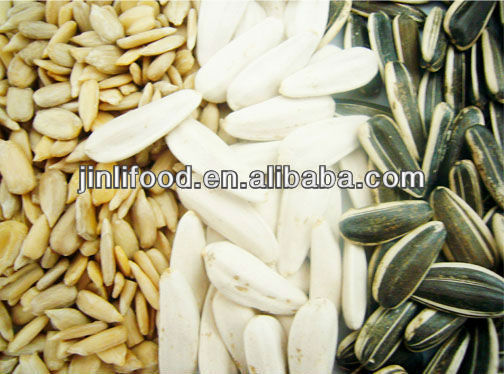 agriculture striped sunflower seeds spain