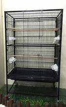 Eco-friendly feature large african grey parrot cage