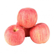 Top Quality Chinese Best Supplier Fresh Apple Red Fuji Apple (20kgs/Carton Packing)