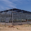Commercial Agricultural Large Span Glass Green