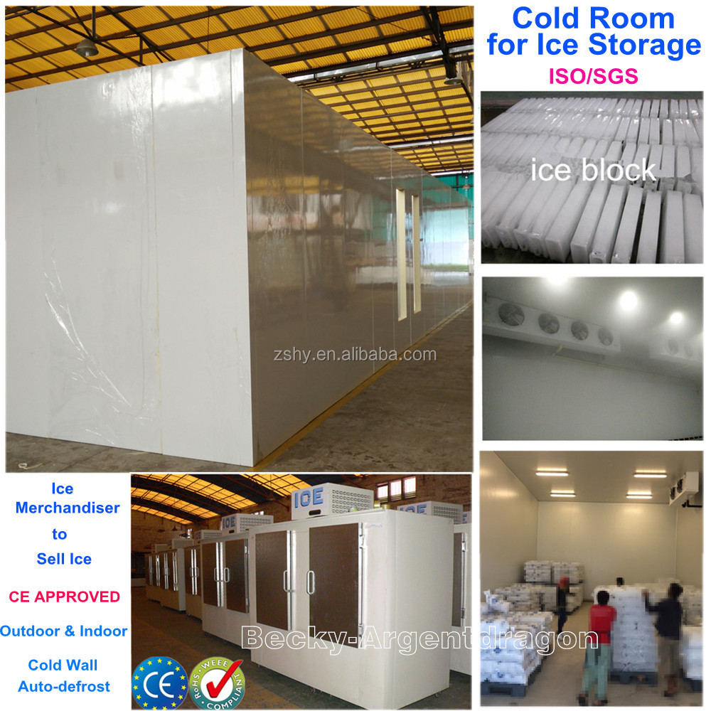 CKD ice freezer storage and ice merchandiser for your option