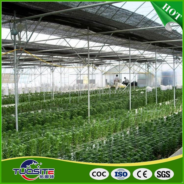 Quality assured hot sale green house plastic film