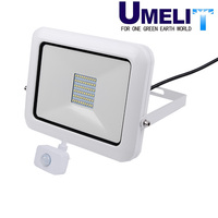 Outdoor IP65 Project SMD Led Flood
