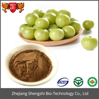 Fruit Extract Emblic Extract Phyllanthus Emblica Extract Powder
