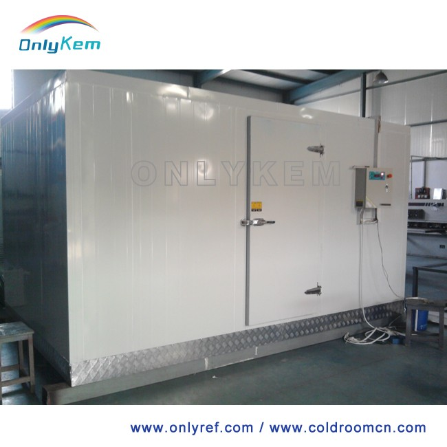panel assembly cold room with refrigeration equipment for frozen food