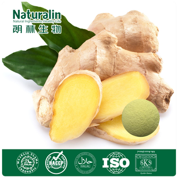 Non-caking Instant Ginger Extract 5% Gingerols