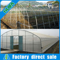 Modern commercial tunnel greenhouse for sale