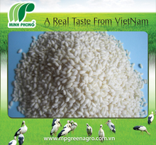 VIETNAMESE WHITE GLUTINOUS RICE_SHORT/ ROUND GRAIN