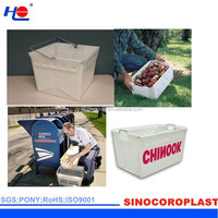 Corrugated Plastic Fruit Packing Box