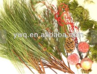 decorative foliage for Christmas decoration natural pine cones