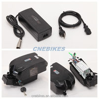 Hot! Li-polymer lithium e-bike battery 36v 10ah frog case with charger for electric bike