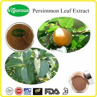 Free sample Persimmon Extract/Persimmon Extract Powder/Diospyros Kaki leaf powder