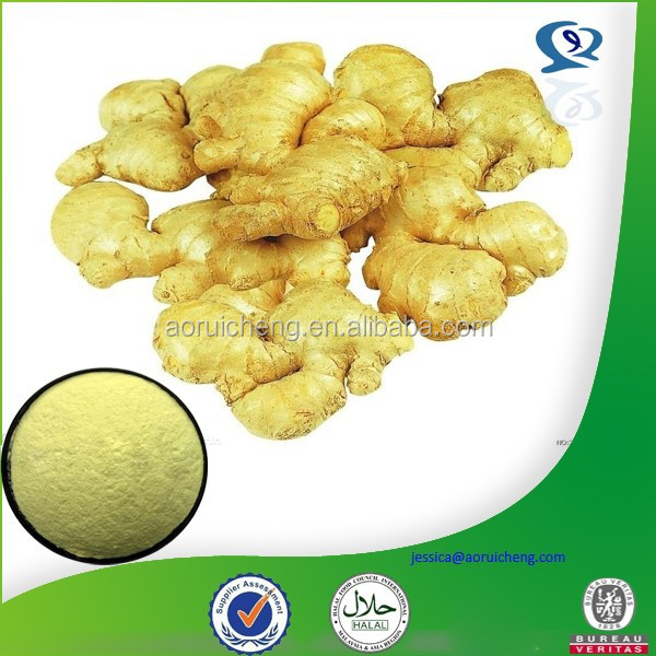 High Quality natural ginger co2 extract