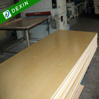 Both Side Well Sanded Paint Grade Plywood
