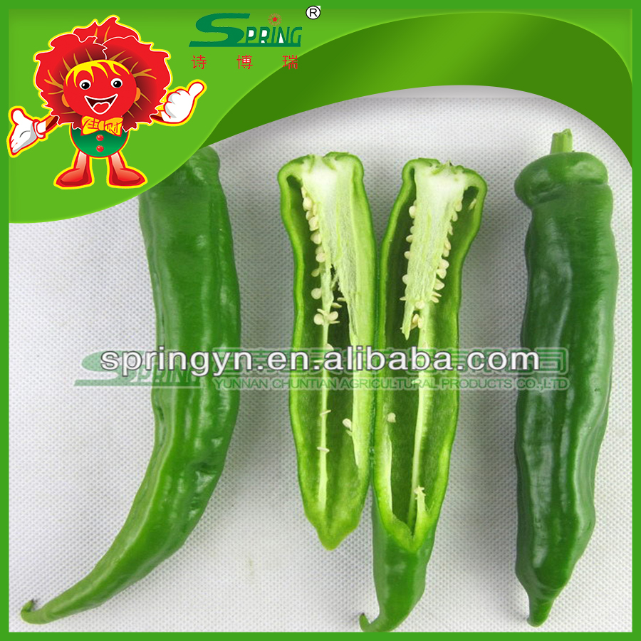 green chilli pepper with stem